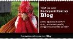 blog-promoimage