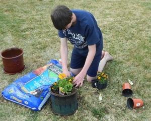 Joe planting flowers